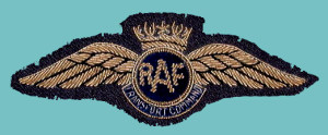 This is the RAF Transport Command Pilot wing in bullion used from the end of March 1943. The bullion badges were unofficial, not issue badges, used as replacements. Note the change in bullion colour from gold to silver in the Transport Command bullion wings.
