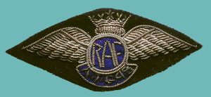 This is the specialised pilot badge worn by Air Transport Group 45 of RAF Transport Command, which operated out of Canada. Little is known about why specialized wings were worn. Windrum